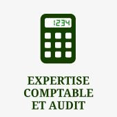 expertise comptable et audit